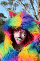 Rainbow Cat face Paint by Faeriegem