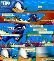 Sonic the Hedgehog: The Speed of Life by PaulistaPenguin