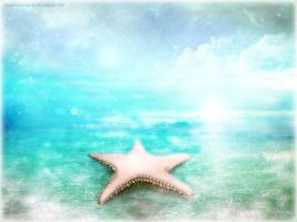 White Sunset (Starfish Island) by s-a-n-i-m