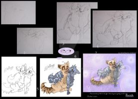 Willowpaws Hero step by step by JB-Pawstep