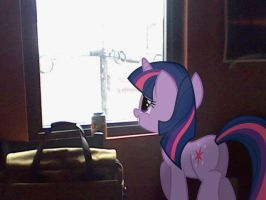 Twilight Sparkle at the window by Paris7500