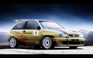 Seat Ibiza Kit Car by EvolveKonceptz