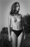 Kr-We 02-16 by Sid-L