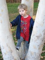 David age 3 climbing trees by MarMicheal
