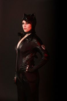 Catwoman - Batman Arkham City by felicia2809