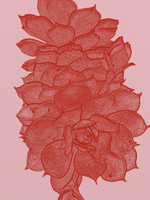 Succulent Greetings - Red by Emily848