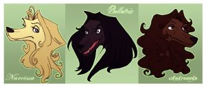 The Black sisters are dogs by uppuN