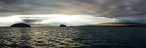 Galapagos by abey79