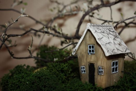 The house on Moss-Hill by mete93