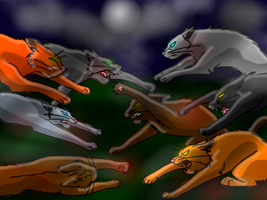 Warrior Cat Fight by WolFkId27