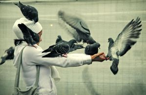 Pigeons attack by AushrineMarija