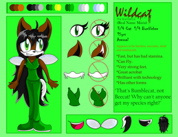 Gift For WildgirlN: Wildcat Reference Sheet by MissAquaAnime