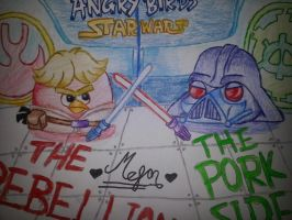 Red Skywalker and Darth Piger Fighting by MeganLovesAngryBirds