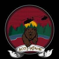 'MN Wild/Air Assault Battalion'logo inspired patch by snowboarder371