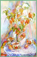Still life with physalis by LORETANA