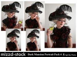 Dark Mansion Portrait Pack 4 by mizzd-stock