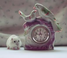 Clock and hamster by CassiesCrue