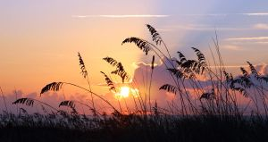 Sunrise on the Dunes - Hilton Head Island by winterface