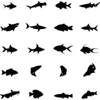 silhouettes set of fish by cgvector