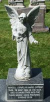 Mount Olivet Cemetery Angel 154 by Falln-Stock