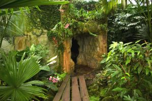 Hidden Cave in Rain Forest 1 by steppelandstock