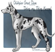 Commission: Great Dane by tailfeather