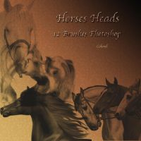 horses heads by libidules