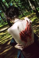 SNK: My wings by Alice-of--spades