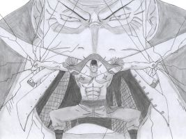 Whitebeard by AA17
