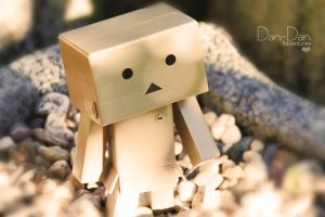 danbo on stones by KiSs-PhotoGraphics