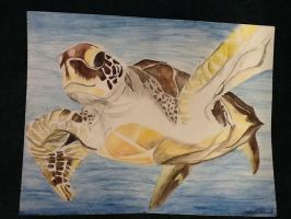 Sea Turtle by ArtDreamImagination