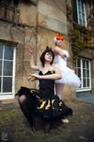 White Swan - Black Raven by Kairi-Heartless