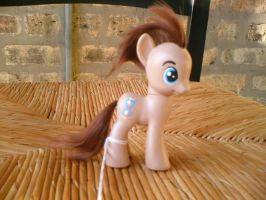 Custom MLP: Doctor Whooves by marienoire