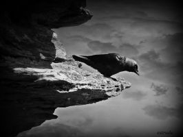 Seek And You Will Find by Estruda
