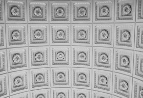 White Ceiling Detail by nikkiontherock