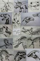 Dinosaurs/Studies by PostaKiwi