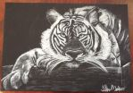 White charcoal tiger by S-a-b-u