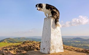 The Lookout Post by micromeg