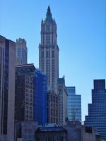 Woolworth Building View III by NY-Disney-fan1955