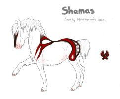 Shamas Import #31 by TalonV