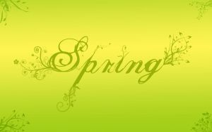 Spring by Fritters
