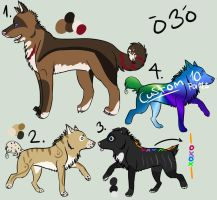 Canine Point Adoptables 4 by Mustang-Heart