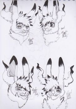 Kata the Hare's expressions [ sketch ] by Hiyoko-little-chick