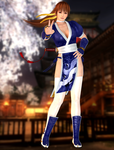 Kasumi(Default) Dead or Alive 5 Last Round by KammyYx