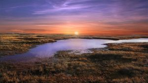 Marsh Down by Frankief