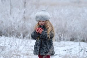 Frosty morning. winter_6 by anastasiya-landa