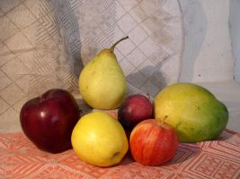 Fruit Composition 17 by SanStock
