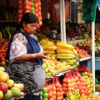 Money for fruit - Otovalo by wildplaces