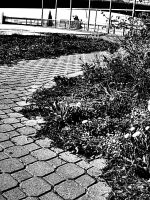 Path to What Use to Be by lovevshate007