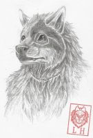 Lucas by LycanthropeHeart
